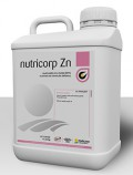 Nutricorp Zn